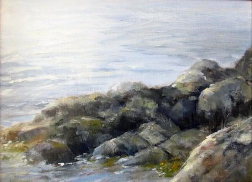 Rocks with seaweed